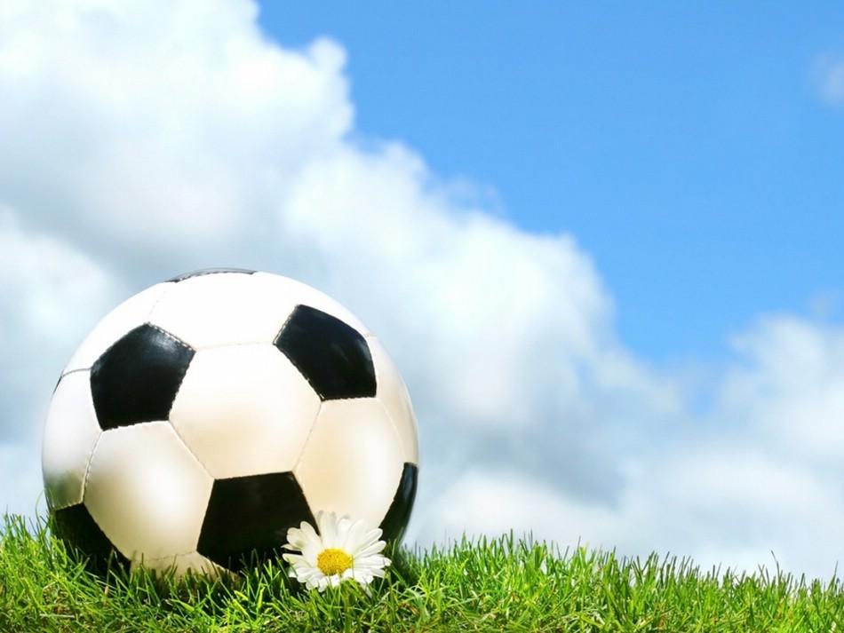 ставки на спорт через посредников